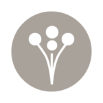 Social_Icons_Wed_Wire